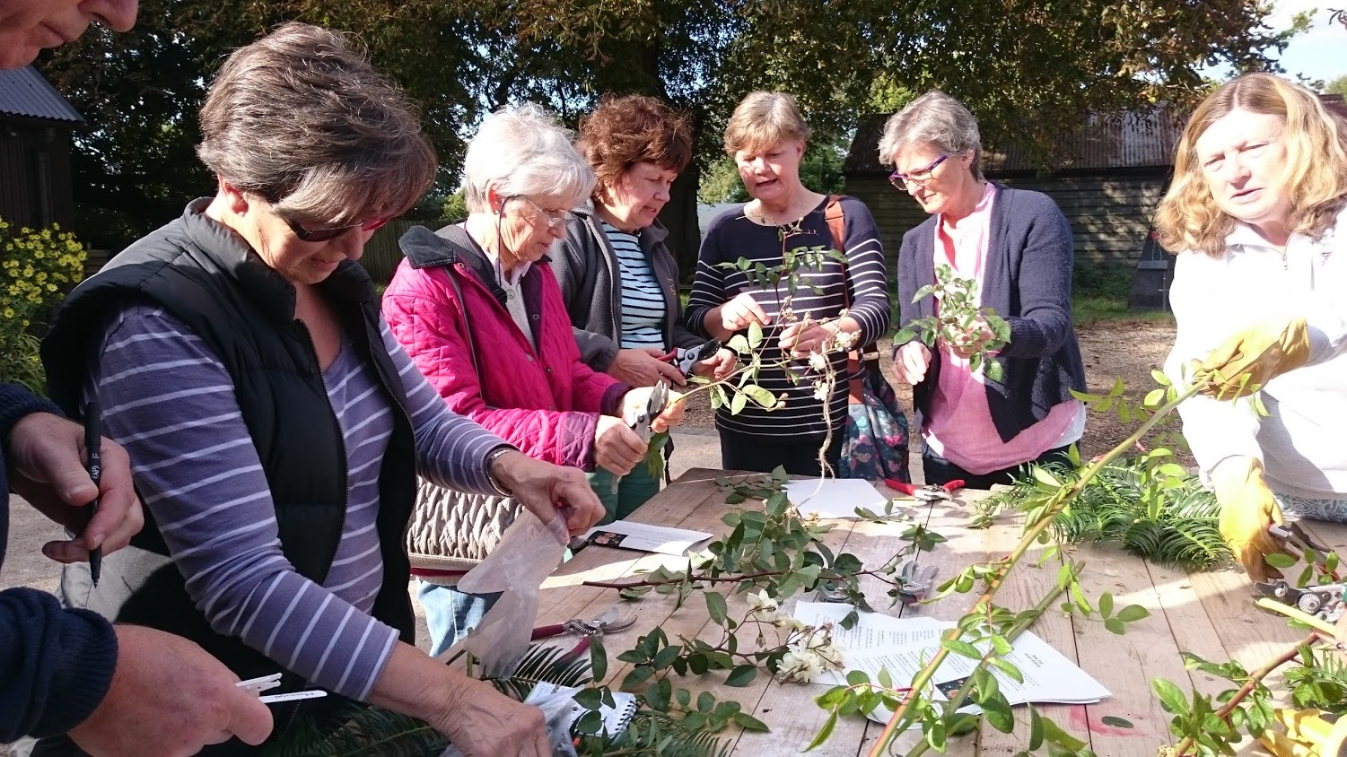 Cuttings workshop, Hinton Ampner