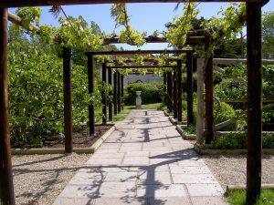 Fishbourne-Roman-Palace-garden-pergola
